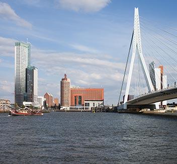 Rotterdam is Buzzing!